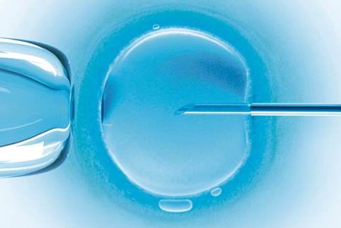 FIV é um tratamento para viabilizar a gravidez.
